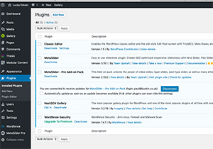 Plugins - Lucky Eleven Web Design