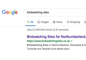 Google - Birdwatching Sites