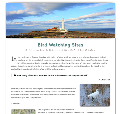 Birdwatching sites Home Page image