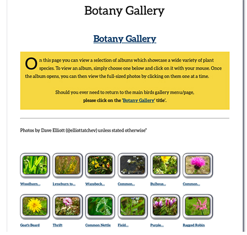 Natural Newbiggin Butterfly Gallery web page image